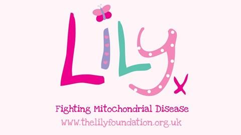 lily logo 2